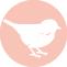 Heimat Conceptstore Logo